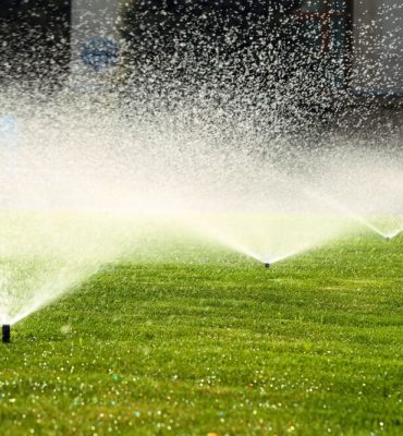 The Best Way to Get Your Sprinkler on This Summer